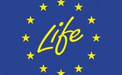 9 DE MAIG | Infoday Regional – Life 2018