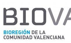 24 DE ENERO | Financiación para Proyectos I+D+i Colaborativos entre Centros de Investigación y Empresas