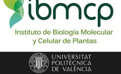 7 DE MAYO | IBMCP-empresas: tecnología al servicio de la agricultura