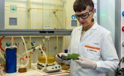 La AVI financia el desarrollo de una nueva técnica de reciclado del césped artificial que recupera todos sus componentes para fabricar productos nuevos