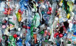 L'AVI finança el desenvolupament d'un tractament amb microorganismes per a transformar en compostos els envasos plàstics no biodegradables